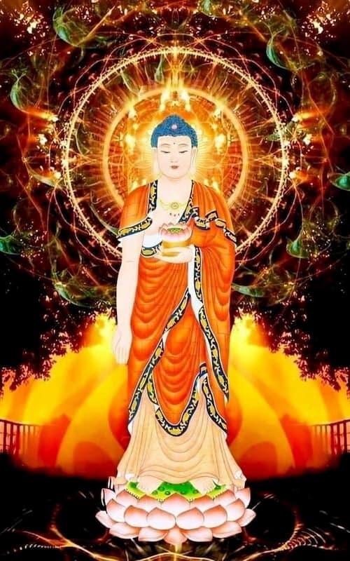 Đức Phật A Di Đà khai thị