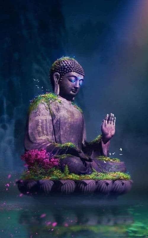 Học Phật pháp bắt đầu từ đâu