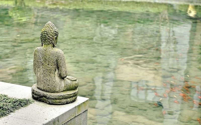 Phật pháp là gì
