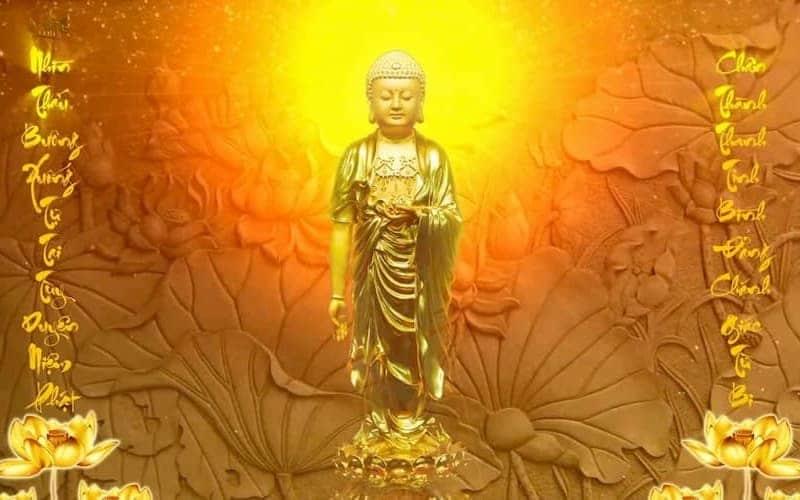 Kinh Quán Vô Lượng Thọ Phật